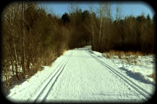 Pic: Skate skiing in Gatineau Park...