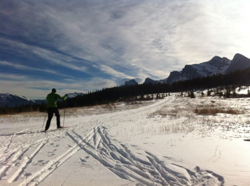 Pic: Skate skiing in Canmore today....
